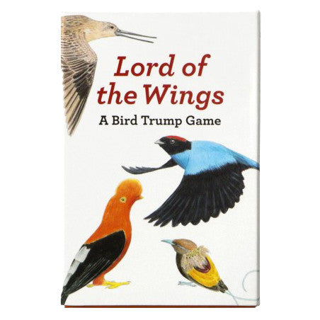 The Lord Of The Wings Game