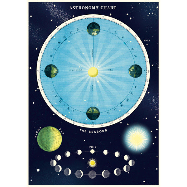 Astronomy Seasons Wrapping Paper / Poster