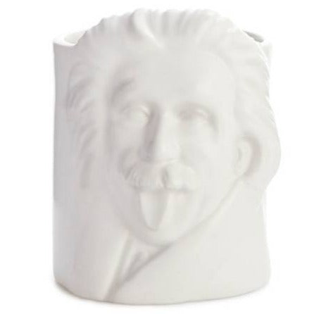 Albert Einstein Desk Tidy