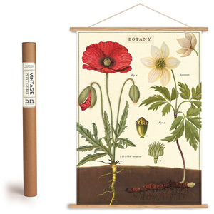 Botany Flowers Chart Wrapping Paper / Poster