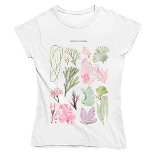 British Seaweeds Women's T-shirt - Fitted
