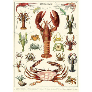 Crustaceans Wrapping Paper / Poster