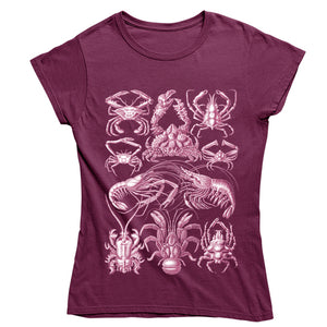 Haeckel's Decapoda Women's T-shirt