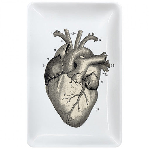 anatomical heart trinket tray - present indicative, Human Body