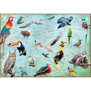 Field Guide to Magnificent Birds 500-piece Jigsaw Puzzle