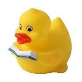 Intellectual Rubber Duck