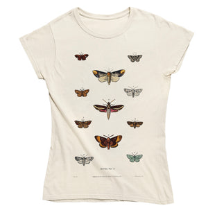 Moths Women's T-shirt