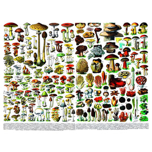 Mushrooms Puzzle