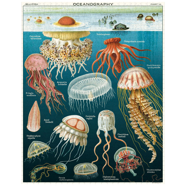 Oceanography 1000 Piece Jigsaw Puzzle