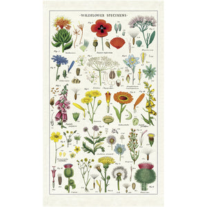 Wildflower Specimens Tea Towel