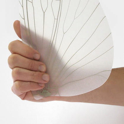 Insect Wing Fan