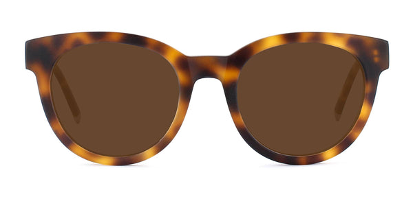 Matte Light Medium Havana with Bronze Lenses
