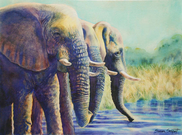 Three Bulls at the Watering Hole - Giclee Print