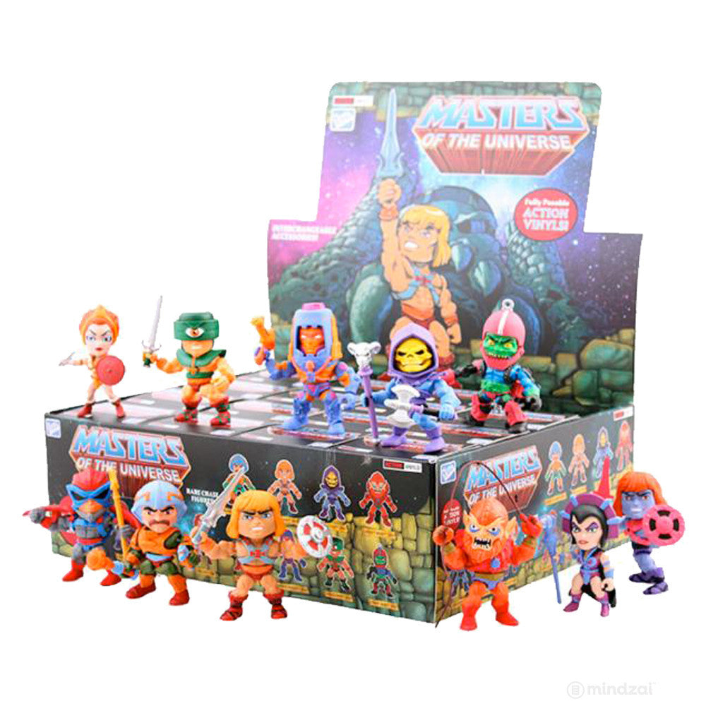 Masters of the Universe Action Vinyls Blind Box Series by The Loyal Subjects - Mindzai  - 1