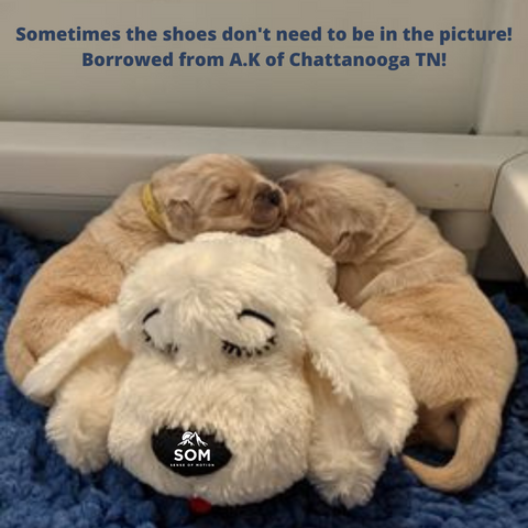 Sometimes, the shoes don't need to be in the picture!