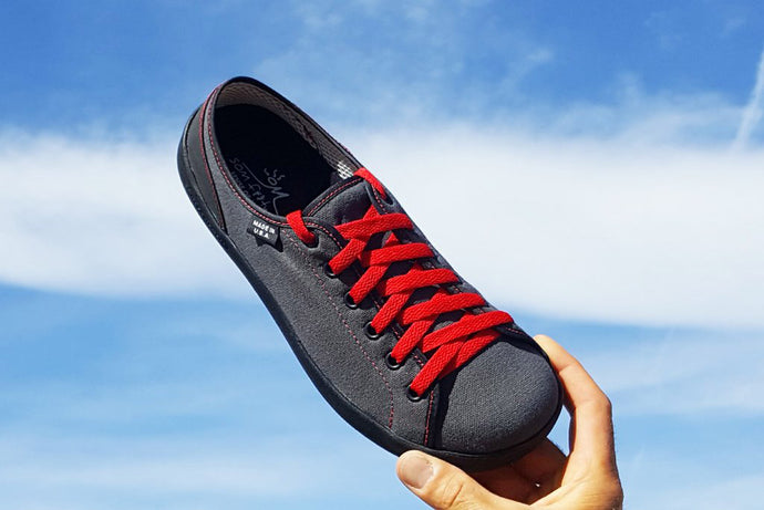 Briquette, a gray canvas with red stitches and laces