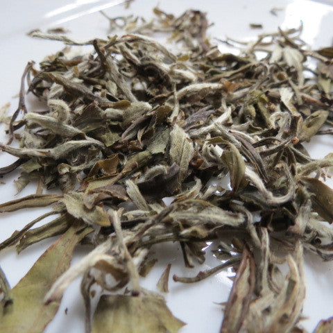 Leopard Snow Buds- Green Tea 130 grams