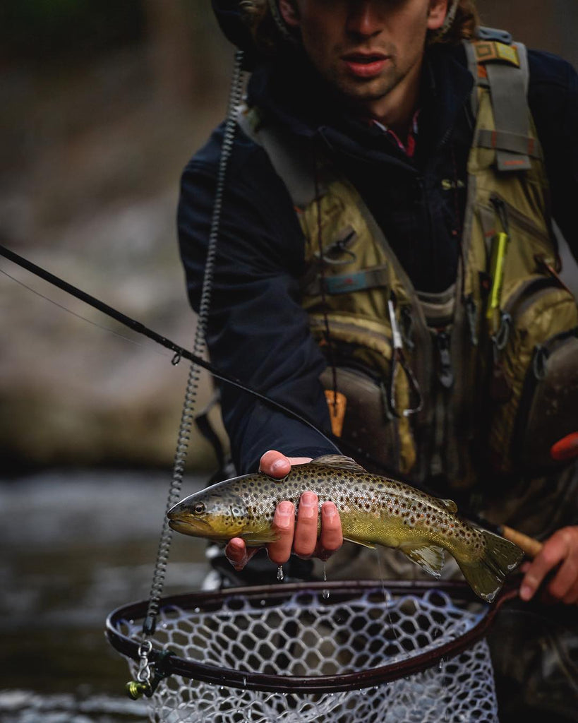 3 Simple Tactics for Fly Fishing Pocket Water trout