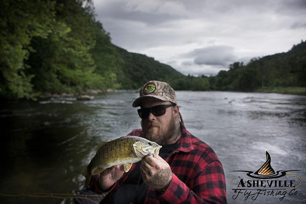 Crooked Creek Holler fly fishing Asheville smallmouth bass