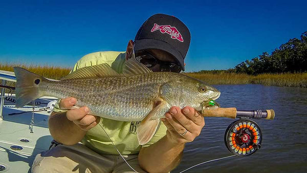 The lowdown on fly fishing for late summer low tide for Fly fishing for redfish