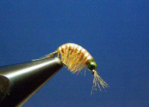 Olive FC Scud Fly Tying Instructions Flymen Fishing Company Best Scud Fly Pattern