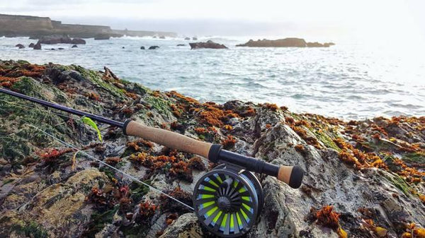 fly fishing tide pools