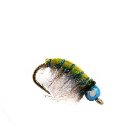 Details about  /1 Bag 3g Rainbow Scud Dub Nymph Dubbing Fly Tying Material Wet Fly Dubbin Fibers