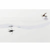 Fish-Skull® Fly Tester™ - Flymen Fishing Company  - 3