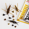 Nymph-Head® Evolution™ Stonefly tungsten beadheads - Flymen Fishing Company  - 1