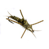 Nymph-Head® Evolution™ Stonefly - Flymen Fishing Company  - 6