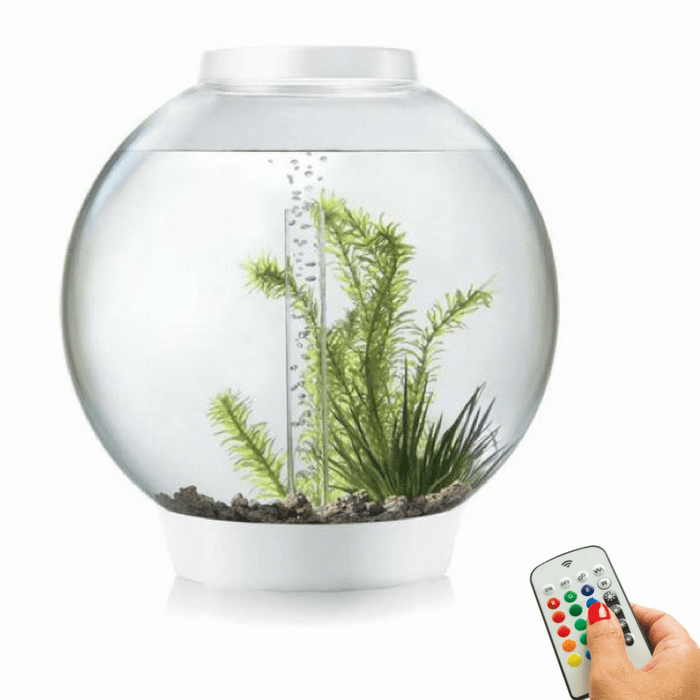 biOrb Classic 30L / 8 Gallon All-in-One Acrylic Aquarium Kit with Multicolor Light