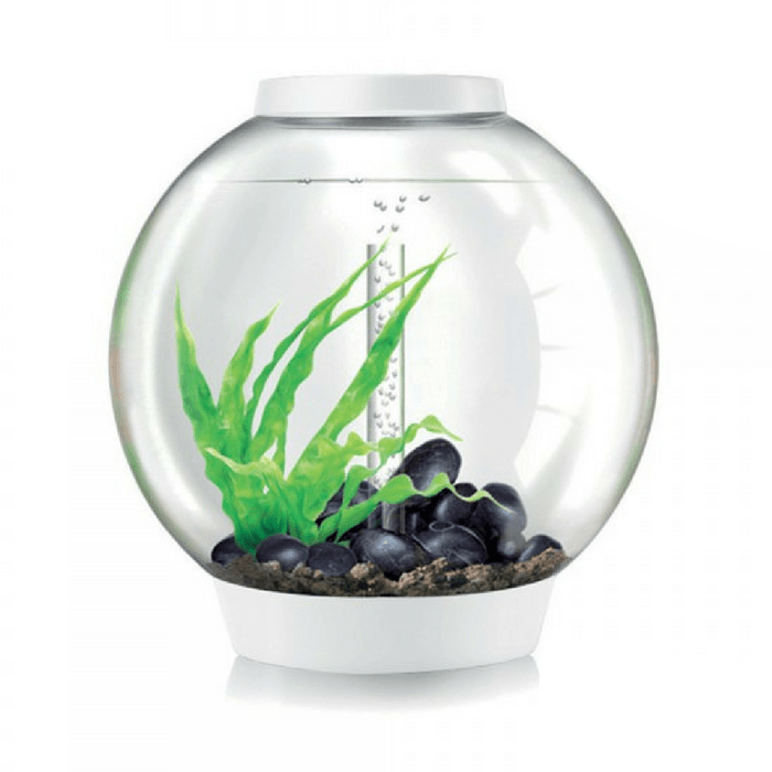biOrb Classic 60L / 16 Gallon All-in-One Acrylic Aquarium Kit with LED Light