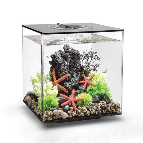 biOrb Cube 30L / 8 Gallon All-in-One Acrylic Aquarium Kit with Multicolor Light