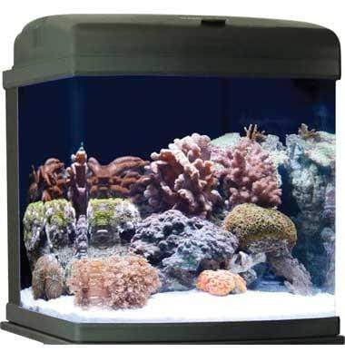JBJ 28 Gallon Nano Cube CF Quad - All-In-One Saltwater Glass Aquarium (MT-602-LED)