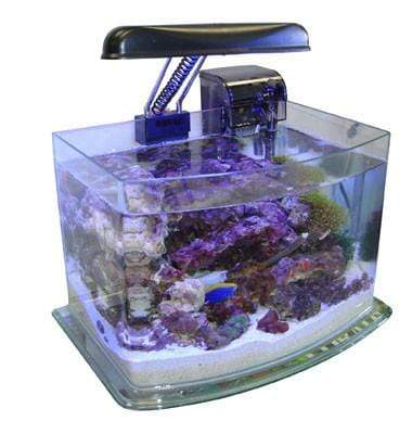 JBJ 3 Gallon PicoTope - Fresh or Saltwater Curved Glass Aquarium (MX-30)