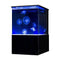 Sunset Marine Labs EON - 10 Gallon Real Jellyfish Aquarium (EON-JF-10)