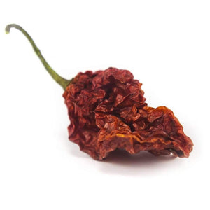 Ghost Chilli pods/ Naga Bhut Jolokia Superhot 1M SHU - FireFly Barbecue