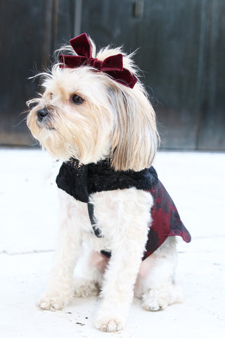 Victoria Stoltz Dog clothing, bows, jackets