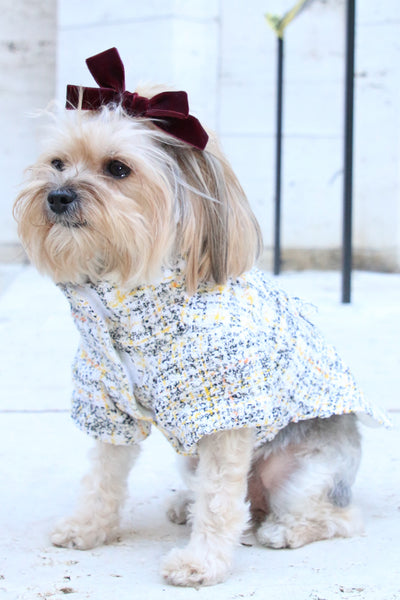 couture boucle dog jacket made in nyc
