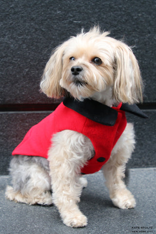 Red Cashmere Dog Jacket with Black Collar