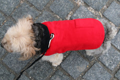 red cashmere dog jacket made in nyc