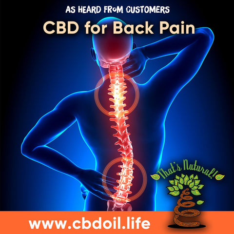 legal hemp CBD, hemp-derived CBD from That's Natural at cbdoil.life and www.cbdoil.life - Thats Natural Entourage Effect, CBD creme, CBD cream, CBD lotion, CBD massage oil, CBD face, CBD muscle rub, CBD muscle jelly, topical CBD products, full spectrum topical CBD products, CBD salve, CBD balm - legal in all 50 States  www.thatsnatural.info, Alex Jones CBD, Washington's Reserve, CW Botanicals - Choose the most premium CBD with testimonials - Entourage Effect with Thats Natural