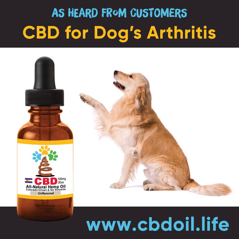 best-rated CBD for dogs, best CBD for great danes, best CBD for chihuahuas, CBD for pets, CBD for dogs, CBD for cats, CBD for birds, CBD oil for animals, That's Natural, Can CBD help animals, hemp-derived CBD, legal That's Natural Topical Products, full spectrum CBD Oil, entourage effects, cbdoil.life, www.cbdoil.life, legal in all 50 states, thatsnatural.info, www.thatsnatural.info