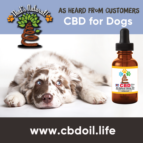 CBD for pets, CBD for dogs, CBD for cats, CBD for birds, CBD oil for animals, That's Natural, Can CBD help animals, hemp-derived CBD, legal That's Natural Topical Products, full spectrum CBD Oil, entourage effects, cbdoil.life, www.cbdoil.life, legal in all 50 states, thatsnatural.info, www.thatsnatural.info