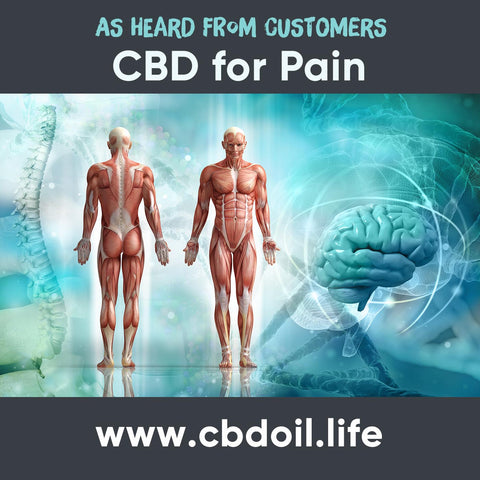 hemp-derived CBD, CBDA, CBDA Oil, legal That's Natural Topical Products, CBD Lotions, CBD Salves, Thats Natural full spectrum lotion - CBD Massage Oil, CBD cream, CBD creme, CBD muscle jelly, CBD salve, CBD face, CBD face and eye creme - hemp-derived CBD, legal in all 50 States at cbdoil.life and www.cbdoil.life - legal in all 50 states - Entourage Effect with Thats Natural!