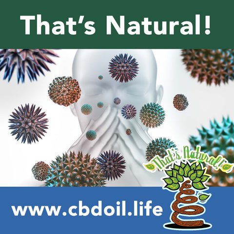 Can CBD help Allergies?  Research is showing that your Endocannabinoid System may be positively affected by natural cannabinoids like CBD!  See more research and news from That's Natural full spectrum CBD-Rich Hemp Oil at  www.cbdoil.life and @cbdhempoil and find us in the #Aspen Valley at the That's #Natural #Life Force #Market @thatsnatural  #asthma #allergies  #holistichealth #holistichealthcoach #essentialoils #essentialoilsrock #ThatsNatural #immunity #immune #immunesystem #asthmasucks #asthmaattack #asthmatic #allergy #allergan #immunebooster #immunesupport