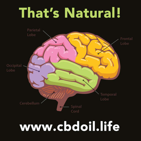 CBD Oil from That's Natural