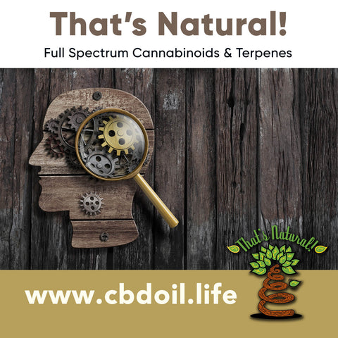 Cannabinoids An Effective Treatment For Glioblastoma?  Glioglastoma has been at the forefront of the conversation ever since the news about Senator John McCain arose.  Full spectrum cannabinoids and terpenes from That's Natural at www.cbdoil.life