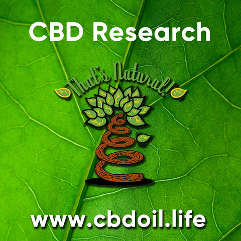 According to this article, by the Jewish News Service, Israel now has funding to start researching CBD as a viable treatment for asthma. An estimated 300 million people worldwide suffer from asthma, and approximately 250,000 deaths each year are due to the disease. - That's Natural at www.cbdoil.life