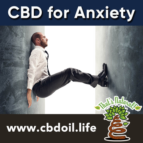 CBD for Anxiety - Cannabinoids for the Endocannabinoid System (ECS) - Full Spectrum CBD Oil from That's Natural at cbdoil.life - Pure, Potent, Trusted Cannabidiol product